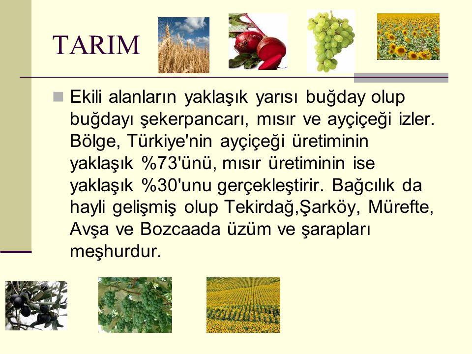 GENEL Marmara Bölgesi ülkemizin kuzeybatısında bulunmaktadır. Nüfusu 21.214.785' dir.Yüzölçümü 67.000 km2'dir. Ayrıca sanayi, ticaret ve tarım konusun