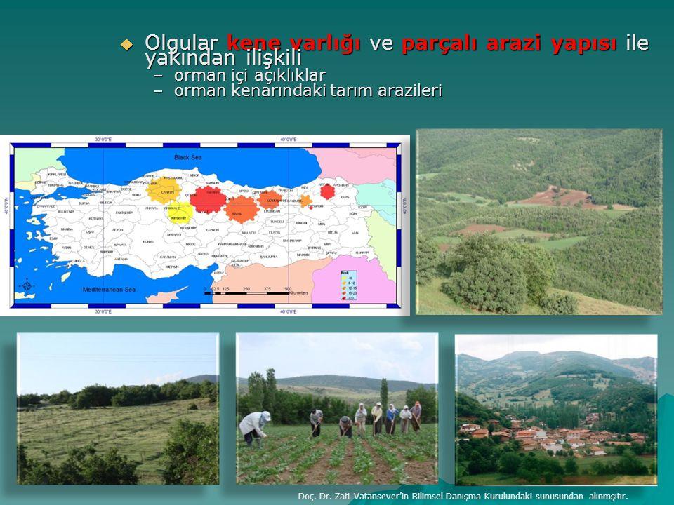  Olgular kene varlığı ve parçalı arazi yapısı ile yakından ilişkili –orman içi açıklıklar –orman kenarındaki tarım arazileri Doç. Dr. Zati Vatansever