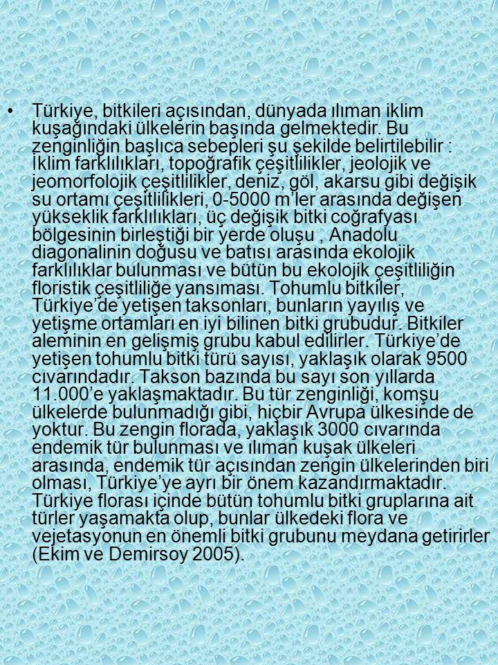 Türkiye, bitkileri açısından, dünyada ılıman iklim kuşağındaki ülkelerin başında gelmektedir.