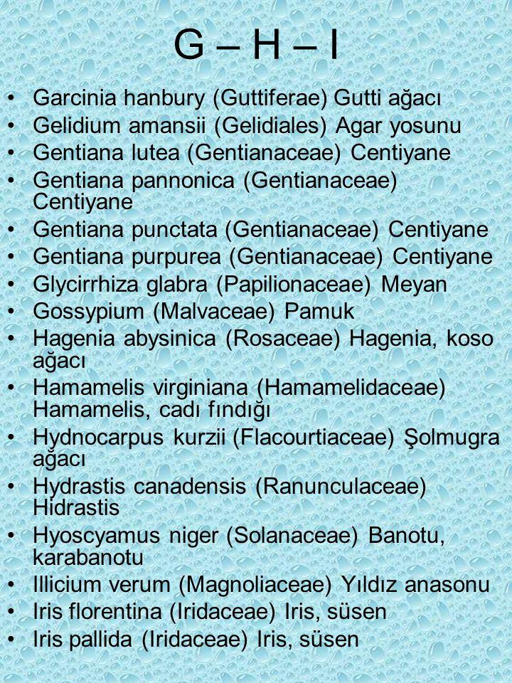 G – H – I Garcinia hanbury (Guttiferae) Gutti ağacı Gelidium amansii (Gelidiales) Agar yosunu Gentiana lutea (Gentianaceae) Centiyane Gentiana pannonica (Gentianaceae) Centiyane Gentiana punctata (Gentianaceae) Centiyane Gentiana purpurea (Gentianaceae) Centiyane Glycirrhiza glabra (Papilionaceae) Meyan Gossypium (Malvaceae) Pamuk Hagenia abysinica (Rosaceae) Hagenia, koso ağacı Hamamelis virginiana (Hamamelidaceae) Hamamelis, cadı fındığı Hydnocarpus kurzii (Flacourtiaceae) Şolmugra ağacı Hydrastis canadensis (Ranunculaceae) Hidrastis Hyoscyamus niger (Solanaceae) Banotu, karabanotu Illicium verum (Magnoliaceae) Yıldız anasonu Iris florentina (Iridaceae) Iris, süsen Iris pallida (Iridaceae) Iris, süsen