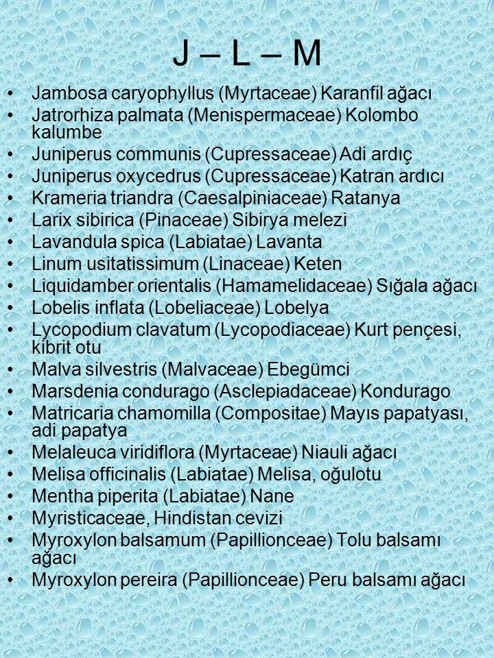 J – L – M Jambosa caryophyllus (Myrtaceae) Karanfil ağacı Jatrorhiza palmata (Menispermaceae) Kolombo kalumbe Juniperus communis (Cupressaceae) Adi ardıç Juniperus oxycedrus (Cupressaceae) Katran ardıcı Krameria triandra (Caesalpiniaceae) Ratanya Larix sibirica (Pinaceae) Sibirya melezi Lavandula spica (Labiatae) Lavanta Linum usitatissimum (Linaceae) Keten Liquidamber orientalis (Hamamelidaceae) Sığala ağacı Lobelis inflata (Lobeliaceae) Lobelya Lycopodium clavatum (Lycopodiaceae) Kurt pençesi, kibrit otu Malva silvestris (Malvaceae) Ebegümci Marsdenia condurago (Asclepiadaceae) Kondurago Matricaria chamomilla (Compositae) Mayıs papatyası, adi papatya Melaleuca viridiflora (Myrtaceae) Niauli ağacı Melisa officinalis (Labiatae) Melisa, oğulotu Mentha piperita (Labiatae) Nane Myristicaceae, Hindistan cevizi Myroxylon balsamum (Papillionceae) Tolu balsamı ağacı Myroxylon pereira (Papillionceae) Peru balsamı ağacı