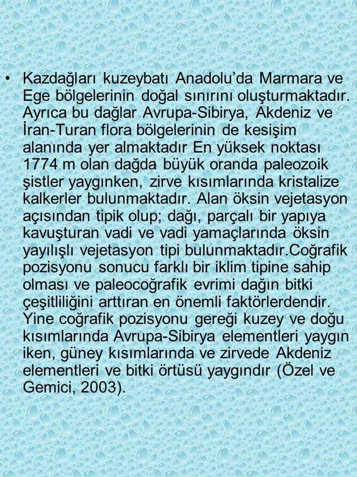 Kazdağları kuzeybatı Anadolu'da Marmara ve Ege bölgelerinin doğal sınırını oluşturmaktadır.