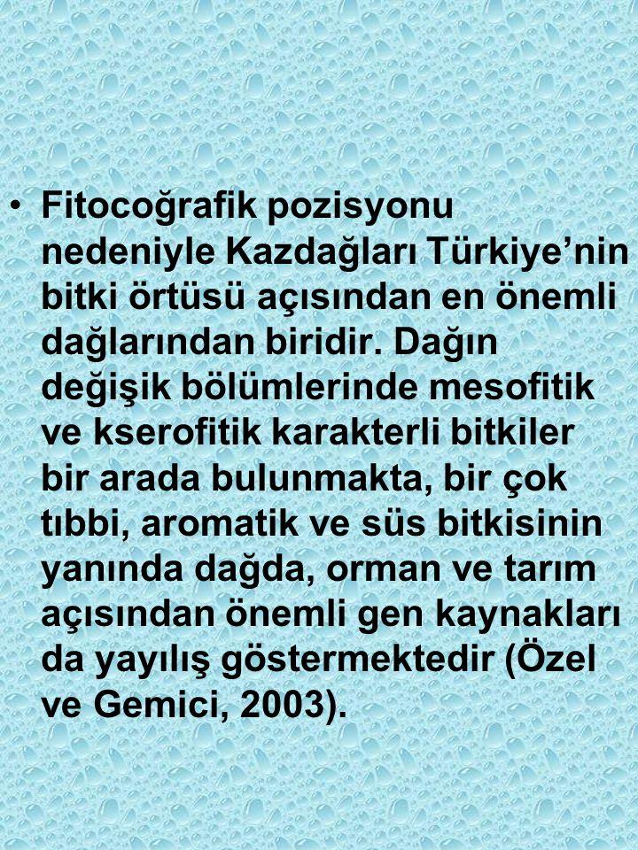 Fitocoğrafik pozisyonu nedeniyle Kazdağları Türkiye'nin bitki örtüsü açısından en önemli dağlarından biridir.