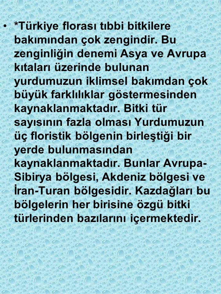 *Türkiye florası tıbbi bitkilere bakımından çok zengindir.