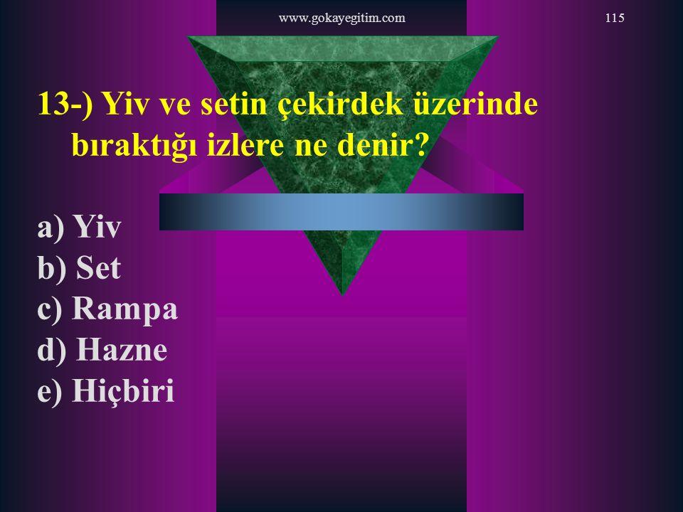 www.gokayegitim.com115 13-) Yiv ve setin çekirdek üzerinde bıraktığı izlere ne denir? a) Yiv b) Set c) Rampa d) Hazne e) Hiçbiri