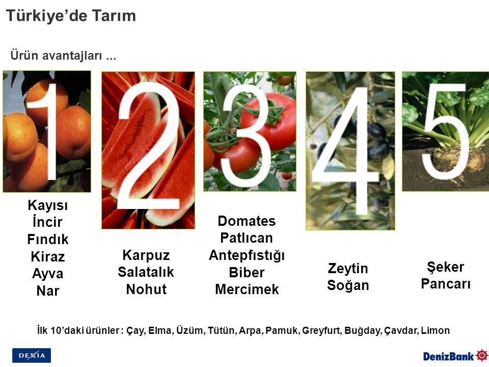 Zeytin Soğan Ürün avantajları... Kayısı İncir Fındık Kiraz Ayva Nar Karpuz Salatalık Nohut Şeker Pancarı Domates Patlıcan Antepfıstığı Biber Mercimek
