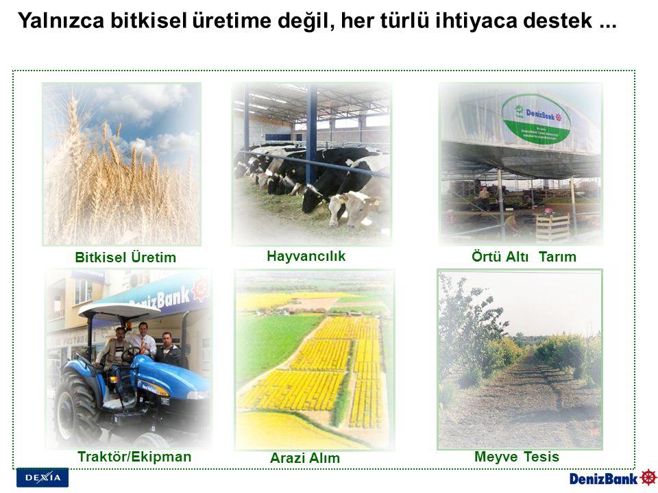 Yalnızca bitkisel üretime değil, her türlü ihtiyaca destek... Traktör/Ekipman Hayvancılık Arazi Alım Bitkisel Üretim Meyve Tesis Örtü Altı Tarım