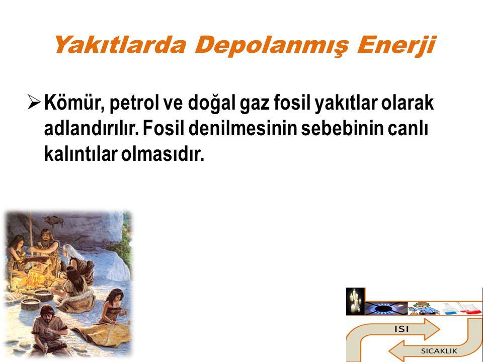 Yakıtlarda Depolanmış Enerji  Kömür, petrol ve doğal gaz fosil yakıtlar olarak adlandırılır. Fosil denilmesinin sebebinin canlı kalıntılar olmasıdır.