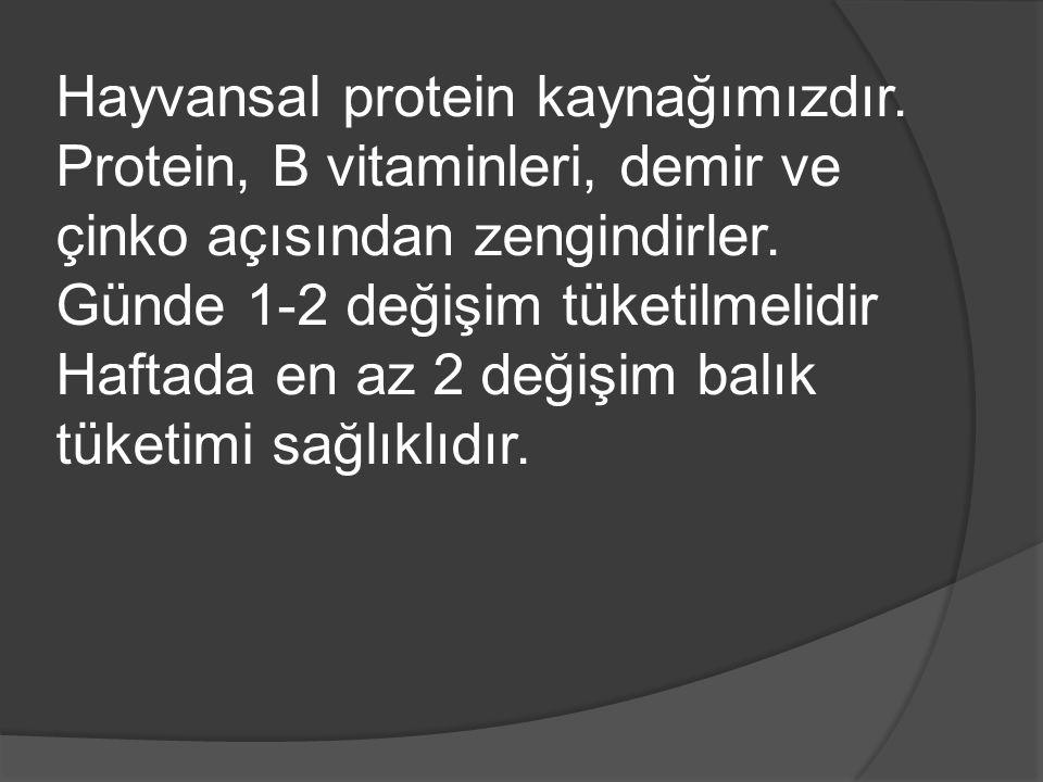 Hayvansal protein kaynağımızdır.Protein, B vitaminleri, demir ve çinko açısından zengindirler.
