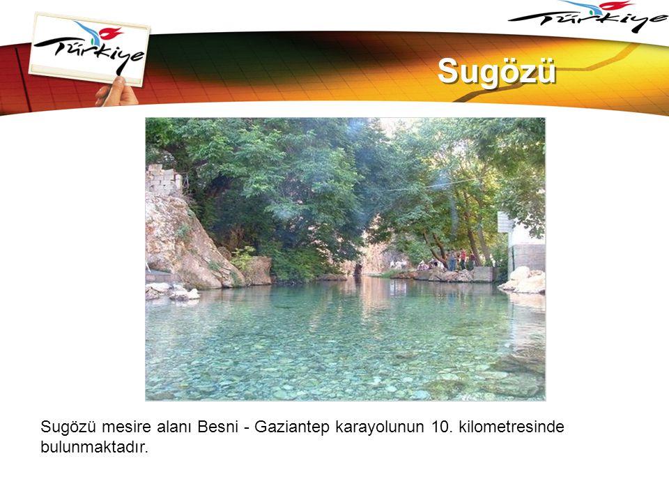 LOGO www.themegallery.com Sugözü Sugözü mesire alanı Besni - Gaziantep karayolunun 10. kilometresinde bulunmaktadır.