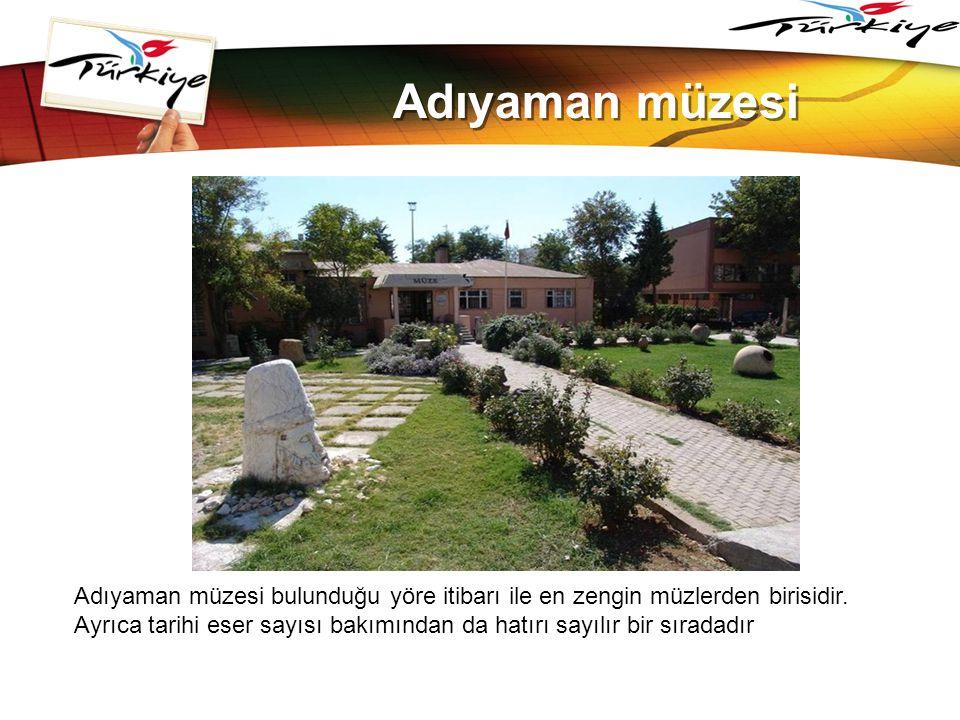 LOGO www.themegallery.com Adıyaman müzesi Adıyaman müzesi bulunduğu yöre itibarı ile en zengin müzlerden birisidir. Ayrıca tarihi eser sayısı bakımınd