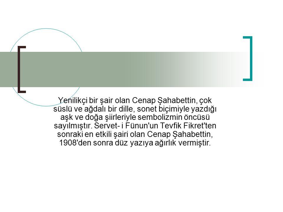 Tanin, Hürriyet, Kalem ve Hak gazetelerinde çıkan makalelerinde Genç Kalemler in sade dil anlayışına karşı Osmanlıca yı savunmuştur.