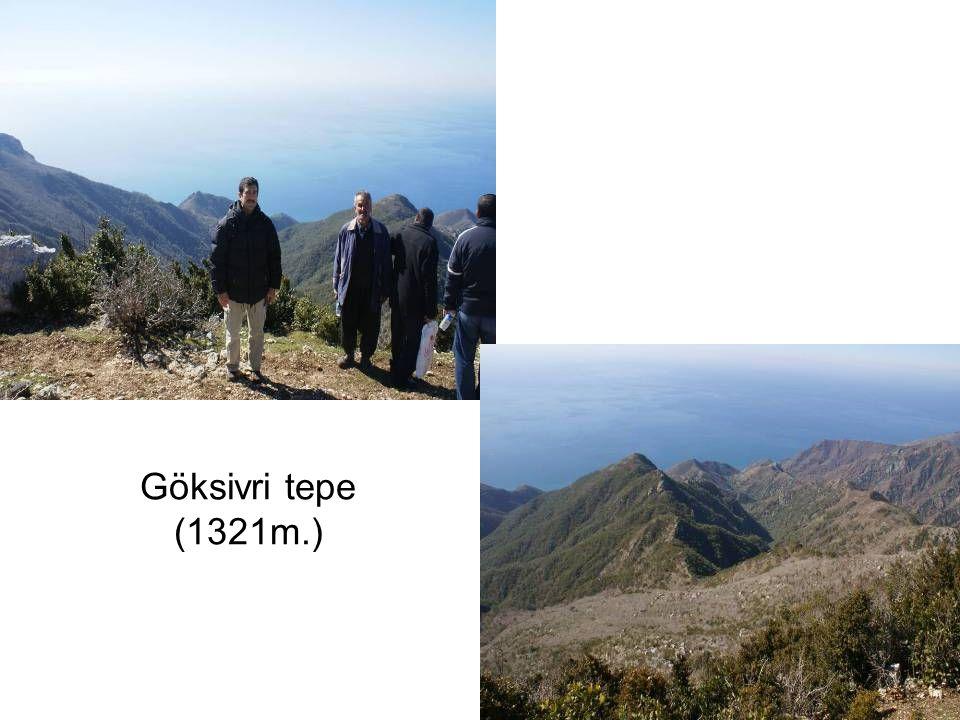 Göksivri tepe (1321m.)