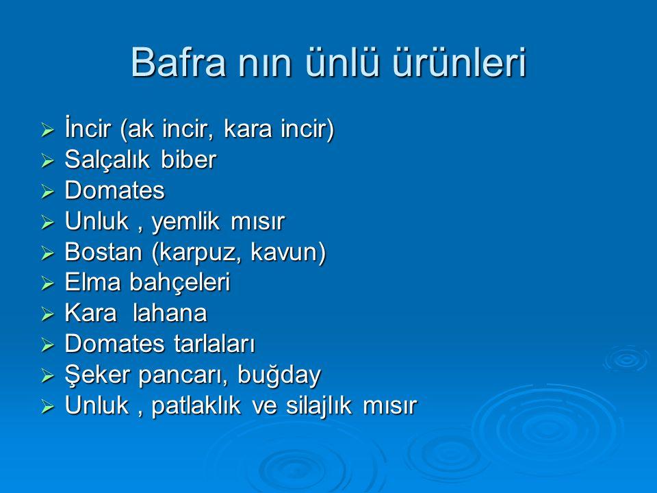 Bafra nın ünlü ürünleri  İncir (ak incir, kara incir)  Salçalık biber  Domates  Unluk, yemlik mısır  Bostan (karpuz, kavun)  Elma bahçeleri  Ka