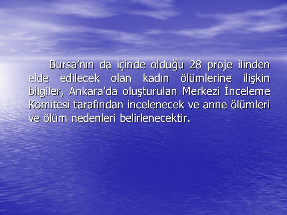Bursa'nın da içinde olduğu 28 proje ilinden elde edilecek olan kadın ölümlerine ilişkin bilgiler, Ankara'da oluşturulan Merkezi İnceleme Komitesi tara