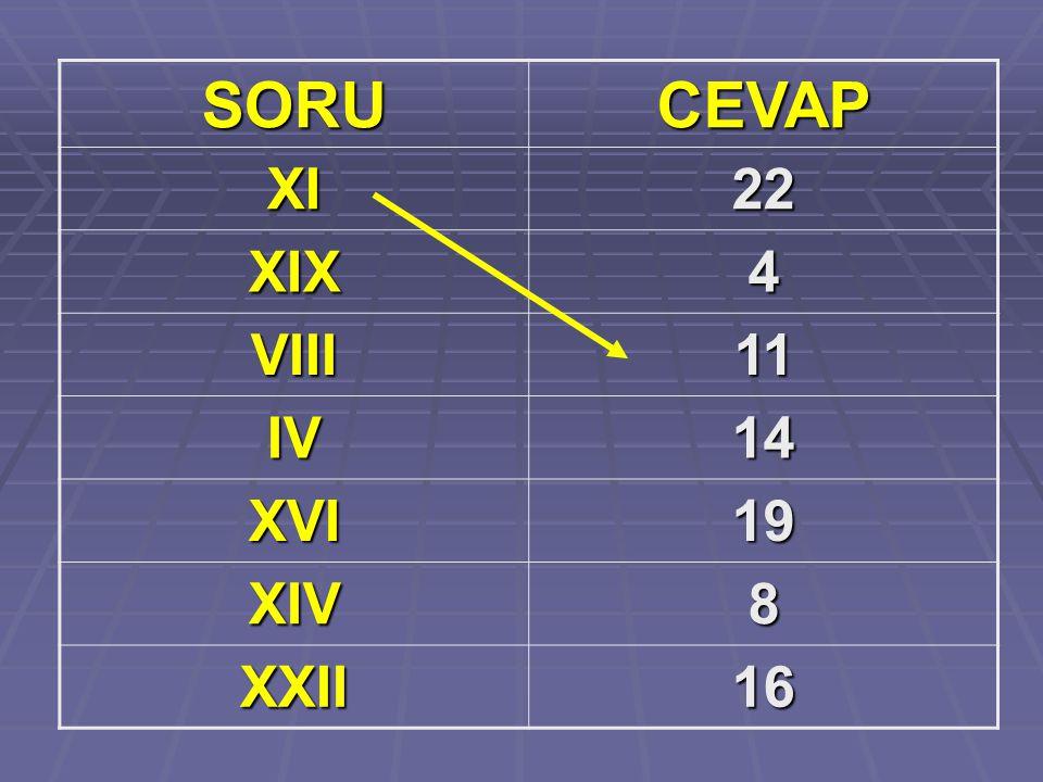 SORUCEVAP XI22 XIX4 VIII11 IV14 XVI19 XIV8 XXII16