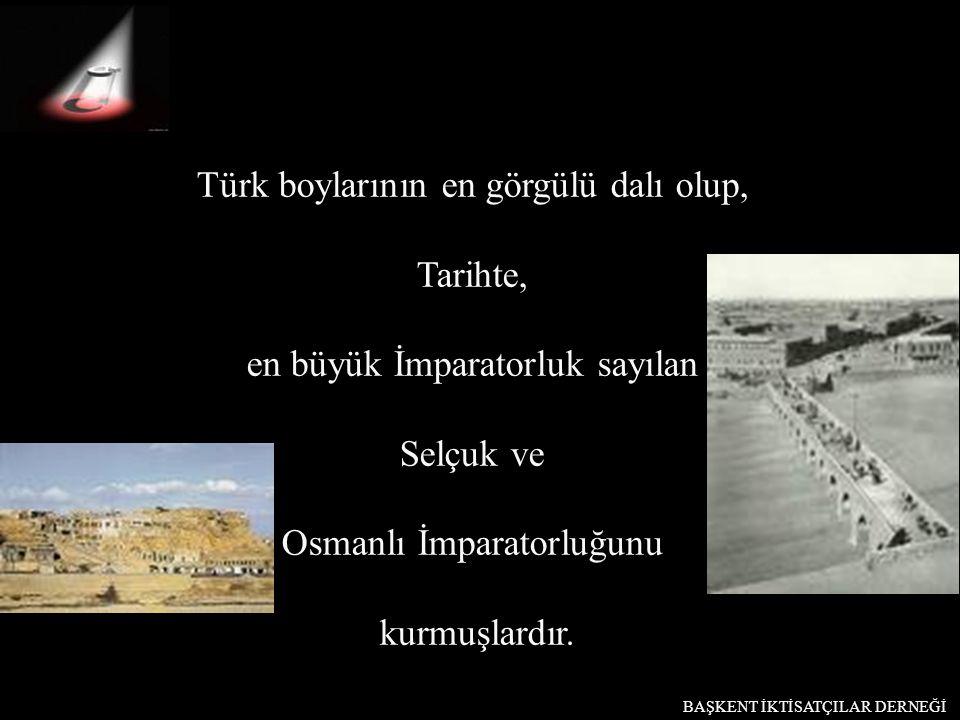 Türk boylarının en görgülü dalı olup, Tarihte, en büyük İmparatorluk sayılan Selçuk ve Osmanlı İmparatorluğunu kurmuşlardır. BAŞKENT İKTİSATÇILAR DERN