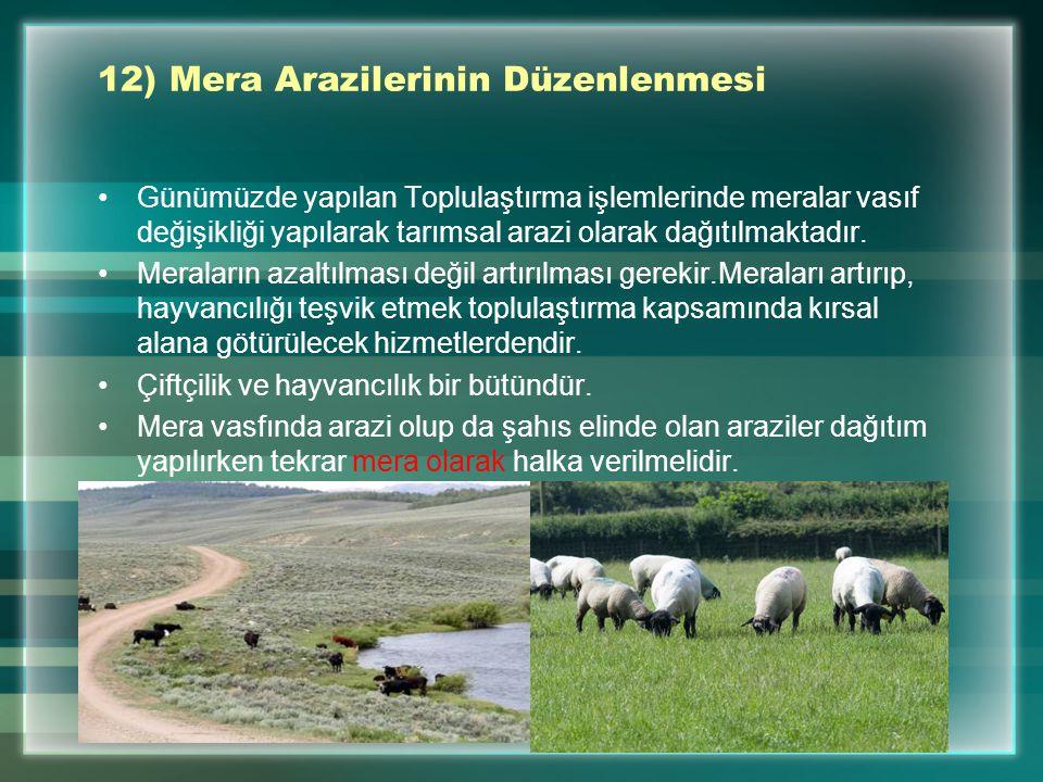 12) Mera Arazilerinin Düzenlenmesi Günümüzde yapılan Toplulaştırma işlemlerinde meralar vasıf değişikliği yapılarak tarımsal arazi olarak dağıtılmakta