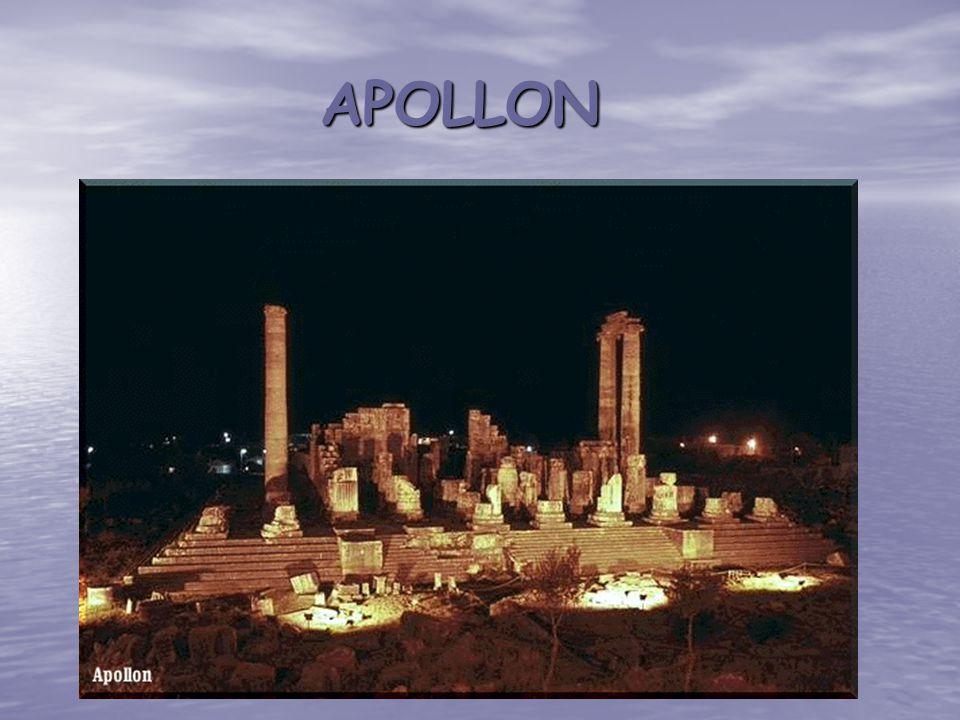 APOLLON APOLLON