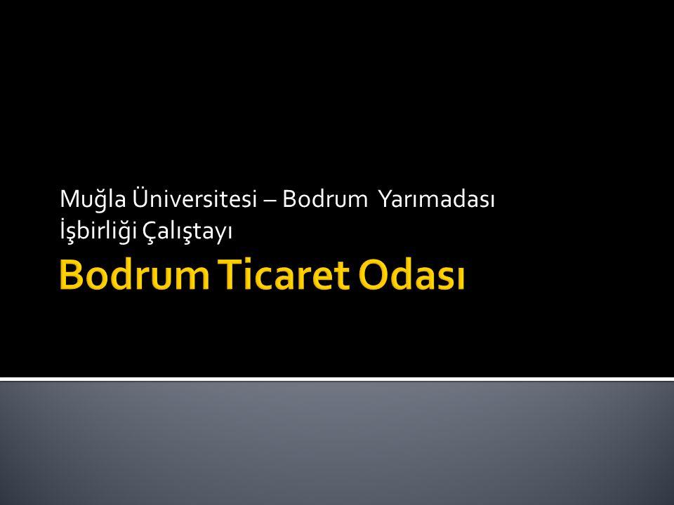 Muğla Üniversitesi – Bodrum Yarımadası İşbirliği Çalıştayı