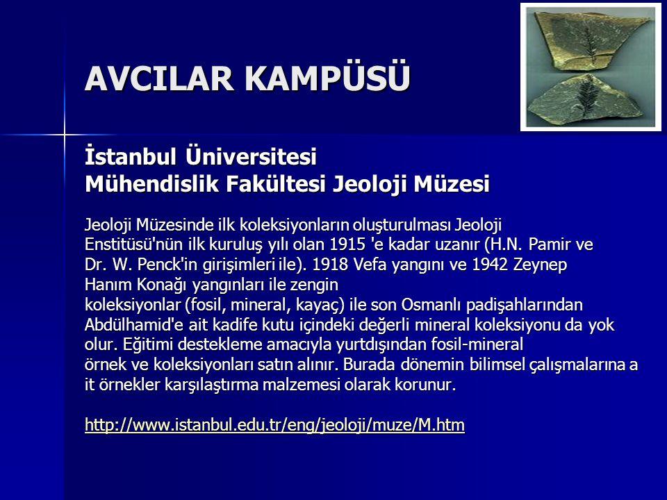AVCILAR KAMPÜSÜ İstanbul Üniversitesi Mühendislik Fakültesi Jeoloji Müzesi Jeoloji Müzesinde ilk koleksiyonların oluşturulması Jeoloji Enstitüsü'nün i