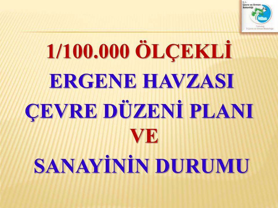 İlimizde bulunan sanayi tesisi sayısı yaklaşık olarak 1536 adet olup, Bunlardan 217 adedi Çerkezköy OSB, 90 Adeti Çorlu Deri OSB, 38 adedi ASB içerisinde yer almaktadır.