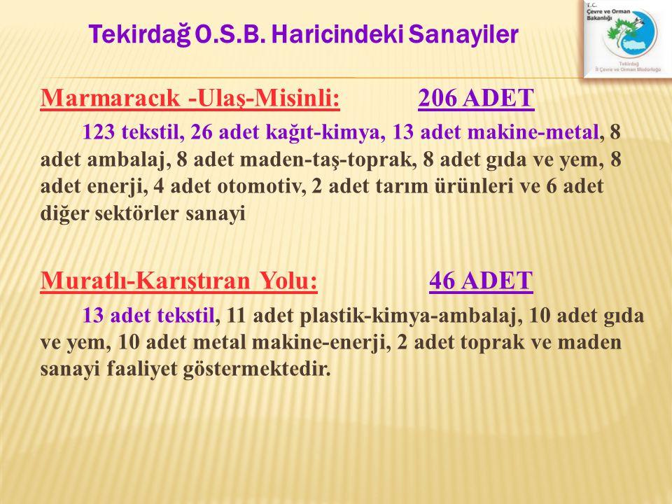 Marmaracık -Ulaş-Misinli: 206 ADET 123 tekstil, 26 adet kağıt-kimya, 13 adet makine-metal, 8 adet ambalaj, 8 adet maden-taş-toprak, 8 adet gıda ve yem