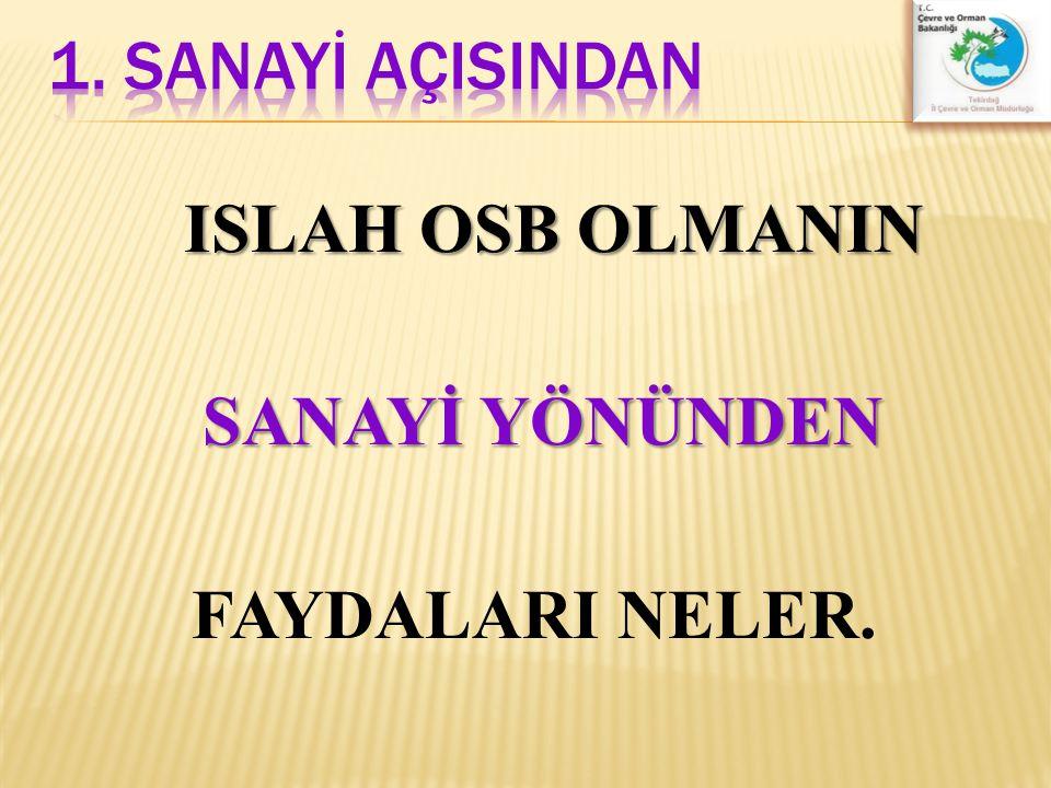 ISLAH OSB OLMANIN SANAYİ YÖNÜNDEN FAYDALARI NELER.