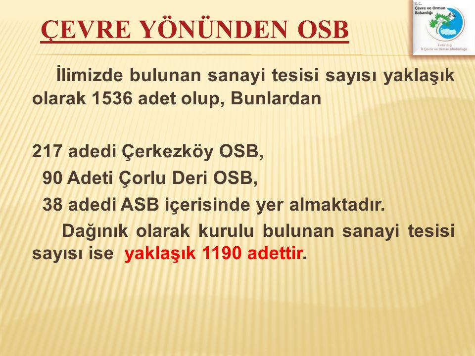 İlimizde bulunan sanayi tesisi sayısı yaklaşık olarak 1536 adet olup, Bunlardan 217 adedi Çerkezköy OSB, 90 Adeti Çorlu Deri OSB, 38 adedi ASB içerisi