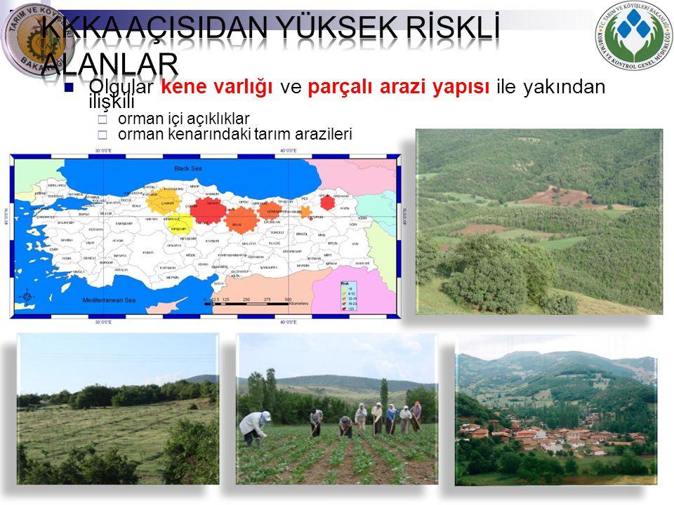 Olgular kene varlığı ve parçalı arazi yapısı ile yakından ilişkili  orman içi açıklıklar  orman kenarındaki tarım arazileri