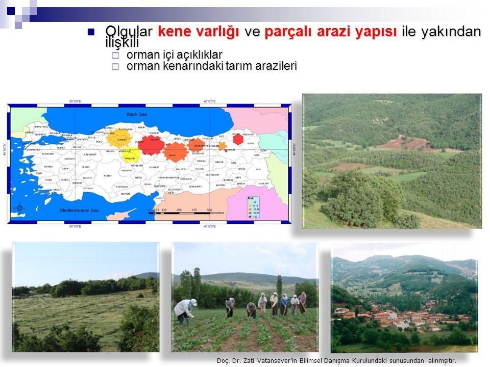 Olgular kene varlığı ve parçalı arazi yapısı ile yakından ilişkili Olgular kene varlığı ve parçalı arazi yapısı ile yakından ilişkili  orman içi açık