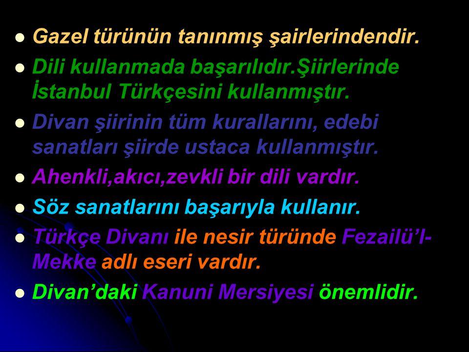 Gazel türünün tanınmış şairlerindendir. Dili kullanmada başarılıdır.Şiirlerinde İstanbul Türkçesini kullanmıştır. Divan şiirinin tüm kurallarını, edeb