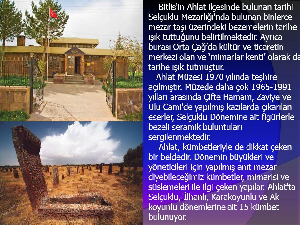 Bitlis'in Ahlat ilçesinde bulunan tarihi Selçuklu Mezarlığı'nda bulunan binlerce mezar taşı üzerindeki bezemelerin tarihe ışık tuttuğunu belirtilmekte