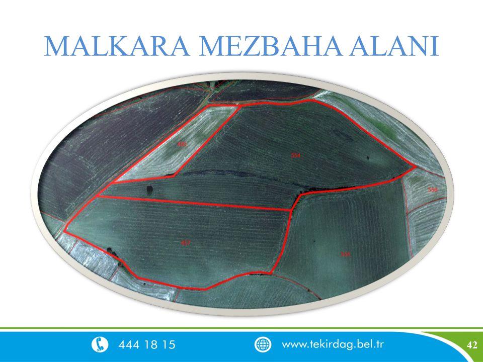 MALKARA MEZBAHA ALANI 42