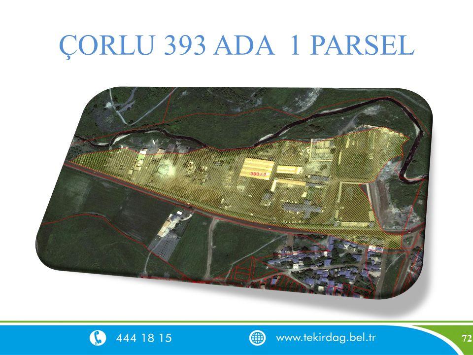 ÇORLU 393 ADA 1 PARSEL 72