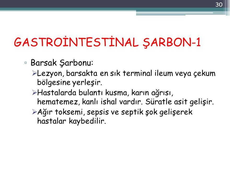 GASTROİNTESTİNAL ŞARBON-1 ▫ Barsak Şarbonu:  Lezyon, barsakta en sık terminal ileum veya çekum bölgesine yerleşir.  Hastalarda bulantı kusma, karın