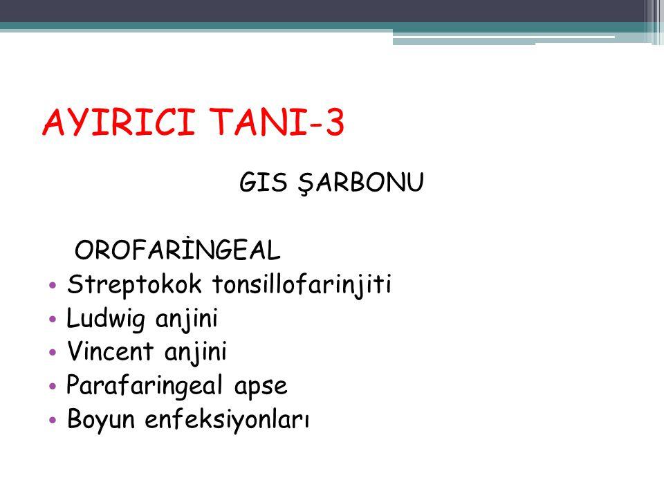 AYIRICI TANI-3 GIS ŞARBONU OROFARİNGEAL Streptokok tonsillofarinjiti Ludwig anjini Vincent anjini Parafaringeal apse Boyun enfeksiyonları