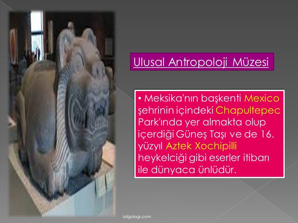 Ulusal Antropoloji Müzesi Meksika'nın başkenti Mexico şehrinin içindeki Chapultepec Park'ında yer almakta olup içerdiği Güneş Taşı ve de 16. yüzyıl Az