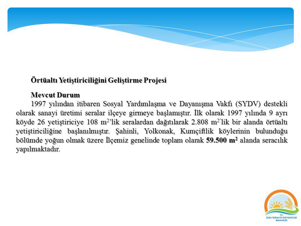 Örtüaltı Yetiştiriciliğini Geliştirme Projesi Mevcut Durum 1997 yılından itibaren Sosyal Yardımlaşma ve Dayanışma Vakfı (SYDV) destekli olarak sanayi