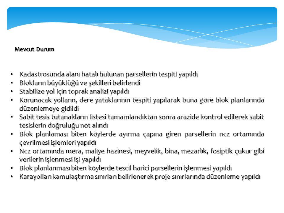 Mevcut Durum Kadastrosunda alanı hatalı bulunan parsellerin tespiti yapıldı Kadastrosunda alanı hatalı bulunan parsellerin tespiti yapıldı Blokların b