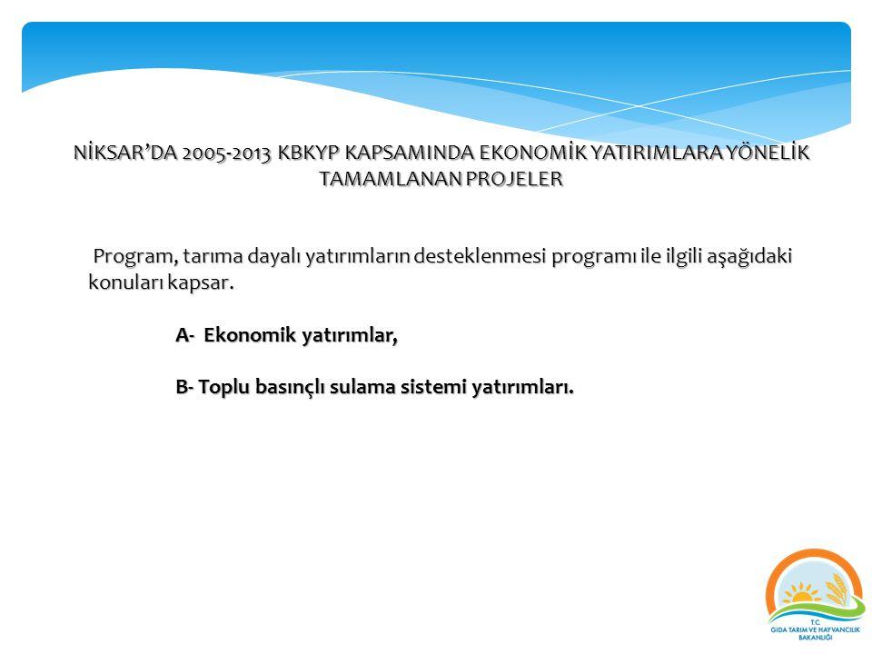NİKSAR'DA 2005-2013 KBKYP KAPSAMINDA EKONOMİK YATIRIMLARA YÖNELİK TAMAMLANAN PROJELER Program, tarıma dayalı yatırımların desteklenmesi programı ile i