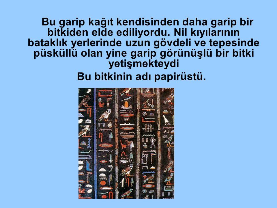 Üzerindeki satırlar şeridin uzunluğunca değil de, dikine; onlarca, hatta yüzlerce sütünlar halinde yazılmıştır.