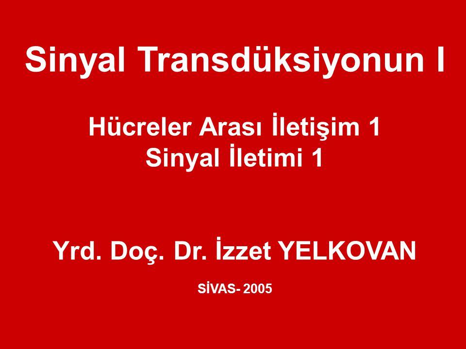 Sinyal Transdüksiyonun I Hücreler Arası İletişim 1 Sinyal İletimi 1 Yrd. Doç. Dr. İzzet YELKOVAN SİVAS- 2005