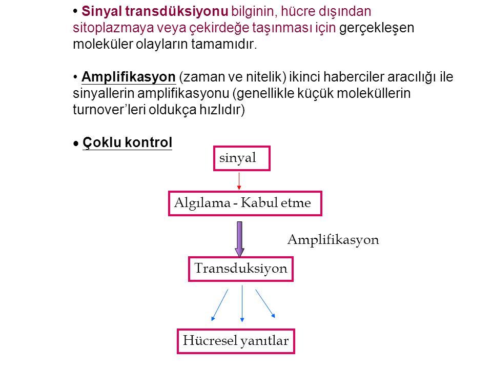 Sinyal transdüksiyonu bilginin, hücre dışından sitoplazmaya veya çekirdeğe taşınması için gerçekleşen moleküler olayların tamamıdır. Amplifikasyon (za