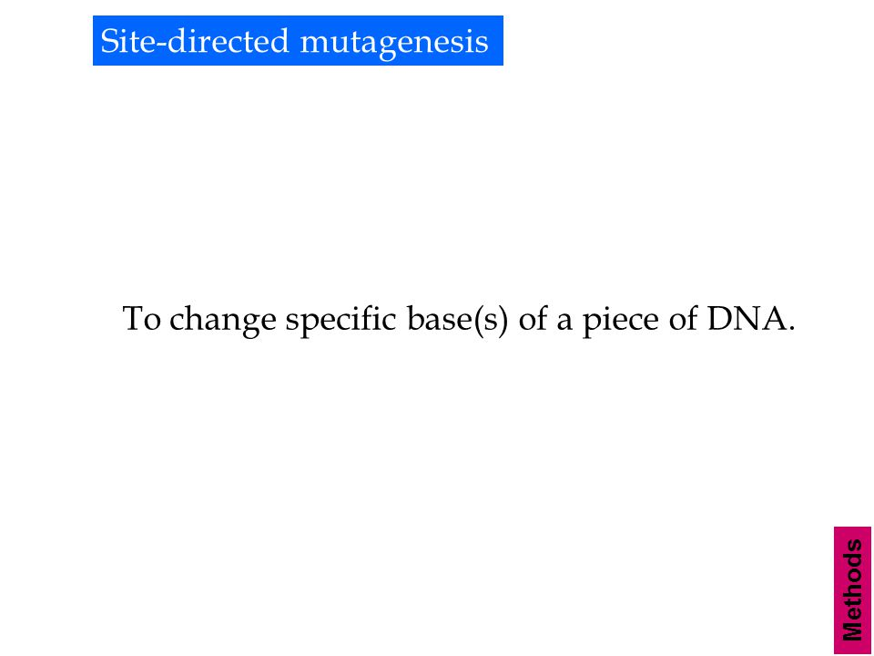 Methods Site-directed mutagenesis To change specific base(s) of a piece of DNA.