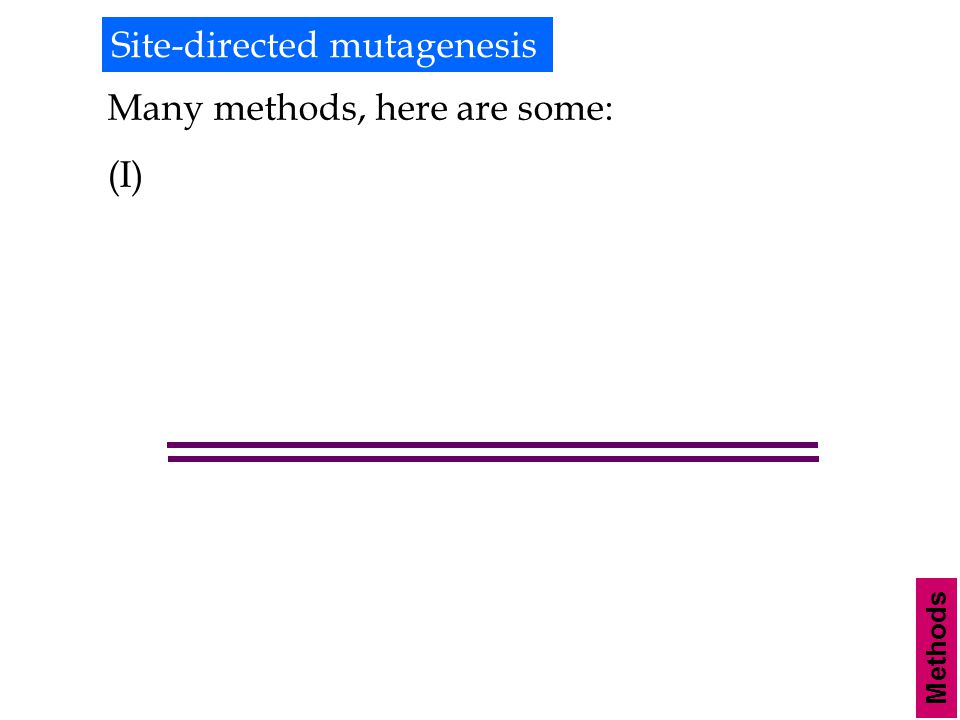 Methods Site-directed mutagenesis Many methods, here are some: (I)