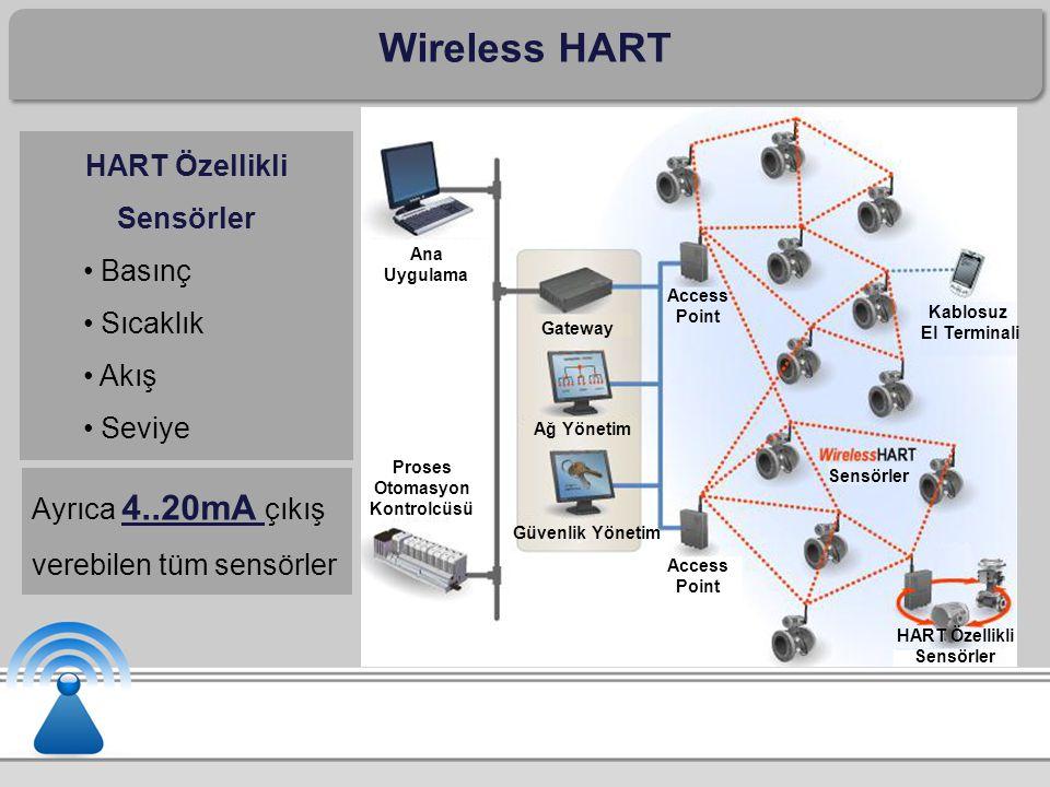 Wireless HART Ana Uygulama Proses Otomasyon Kontrolcüsü Gateway Ağ Yönetim Güvenlik Yönetim Access Point Kablosuz El Terminali HART Özellikli Sensörler Sensörler HART Özellikli Sensörler Basınç Sıcaklık Akış Seviye Ayrıca 4..20mA çıkış verebilen tüm sensörler