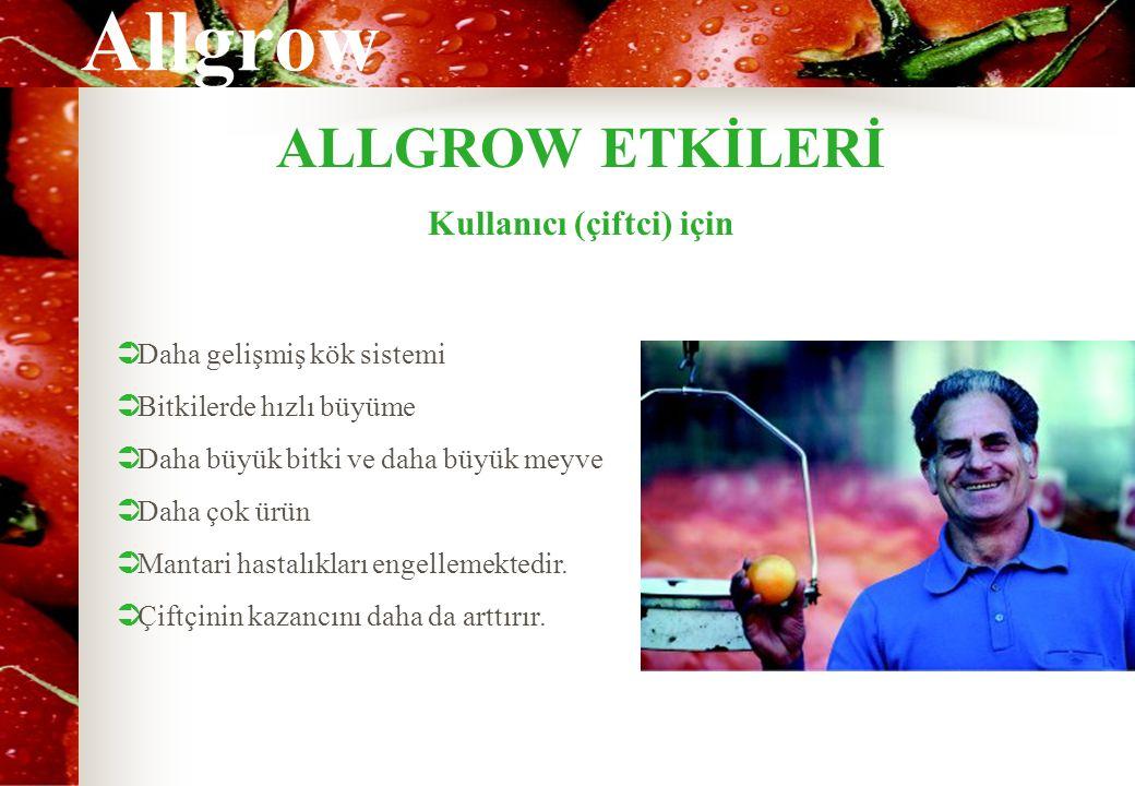 Allgrow ALLGROW ETKİLERİ Kullanıcı (çiftci) için  Daha gelişmiş kök sistemi  Bitkilerde hızlı büyüme  Daha büyük bitki ve daha büyük meyve  Daha ç