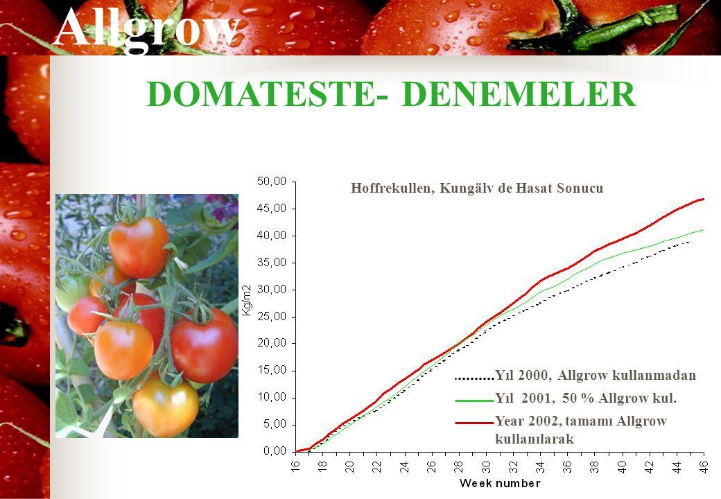 Allgrow DOMATESTE- DENEMELER Hoffrekullen, Kungälv de Hasat Sonucu Yıl 2000, Allgrow kullanmadan Yıl 2001, 50 % Allgrow kul. Year 2002, tamamı Allgrow