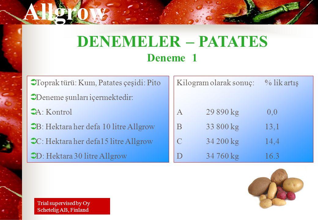 Allgrow DENEMELER – PATATES Deneme 1 Kilogram olarak sonuç: % lik artış A29 890 kg 0,0 B33 800 kg13,1 C34 200 kg14,4 D34 760 kg16.3  Toprak türü: Kum, Patates çeşidi: Pito  Deneme şunları içermektedir:  A: Kontrol  B: Hektara her defa 10 litre Allgrow  C: Hektara her defa15 litre Allgrow  D: Hektara 30 litre Allgrow Trial supervised by Oy Schetelig AB, Finland
